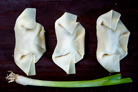 Folded Wontons